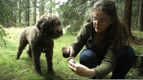 Marion mit Fiona und Beppo auf Steinpilz Suche